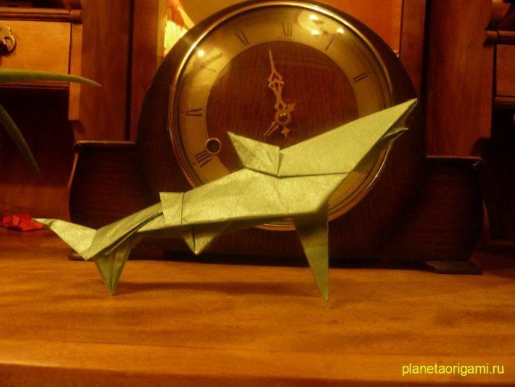 Акула по схеме Gilgado Fernando