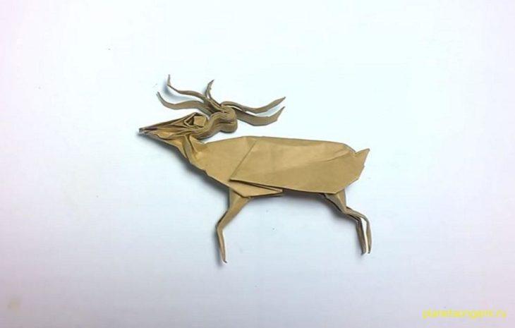 Оригами северный олень по схеме Huynh Gia Hy