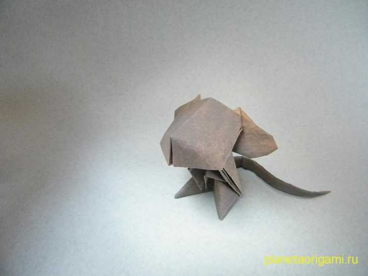 мышка по схеме джеки чана